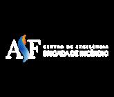 Onde Encontrar Treinamento de Evacuação Itapevi - Simulados de Evacuação em São Paulo - Aldeia da Serra Fire